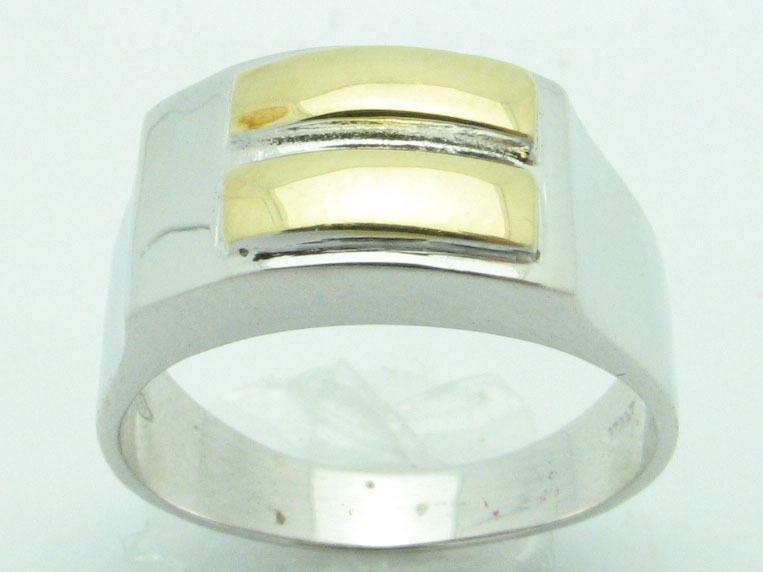 11616 18K TWO TONE EQUALITY RING